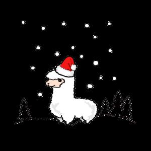 Winter Alpaka