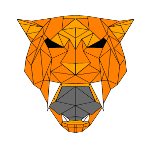 Sabre Geometric