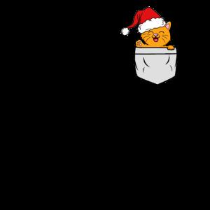Katze in Brusttasche mit Weihnachtsmütze