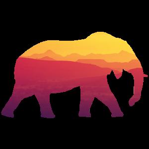 Elefant Sonnenuntergang - Elefant Silhouette