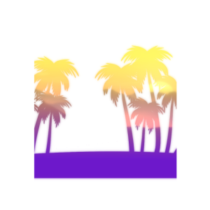 Palmen Insel Sonnenuntergang
