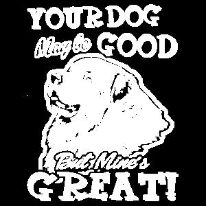 Große Pyrenäenhemden Ihr Hund vielleicht gut