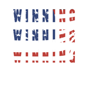 Winning USA flag