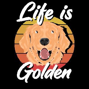 Golden Retriever Hundefreund Retro
