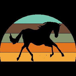 Pferd Retro Sunset