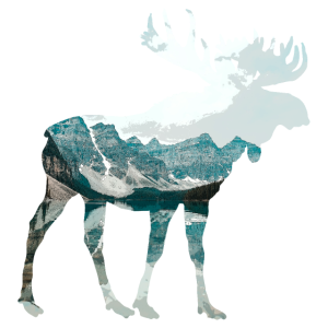 Double Exposure Animals Male Moose Matching Gift