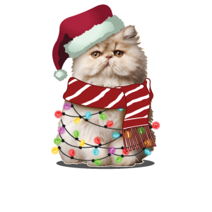 Weihnachts Santa Himalayan Cat Lover Weihnachtsgeschenk