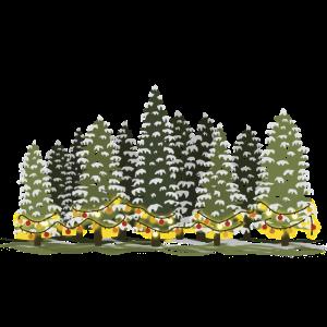 Wald mit bunten Lichterketten