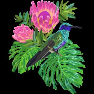 Kolibri tropisch, Vogel, Blumen,