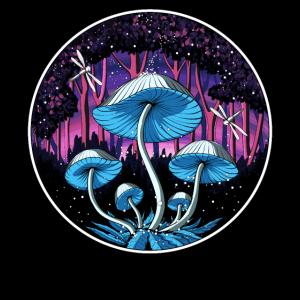 Magic Mushroom Fantasy Trip