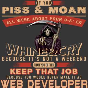Web-Entwickler