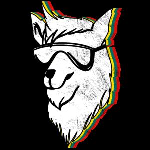 Alpaca Accessoires
