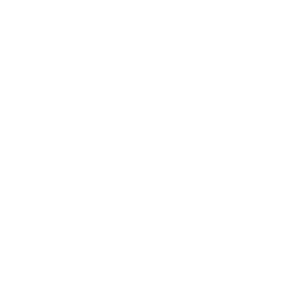 Motorrad born to ride Tacho