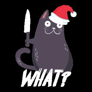 What Weihnachten Geschenk Lustige Katze Katzen Cat