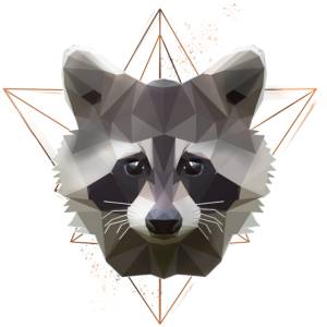 Low Poly Waschbär Racoon Design