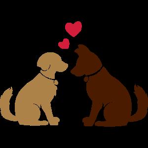 Hundeliebe - Zwei Hunde mit Herz :) Two dogs heart