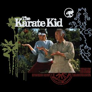 Karate Kid Daniel & Mr. Miyagi