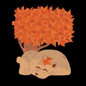 Bär schläft unter einem Baum im Herbst