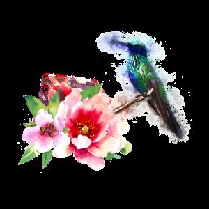 exotischer Paradiesvogel fliegen Farbe Blüte