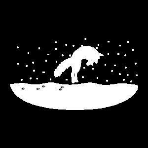 Schneefuchs Snow Fox