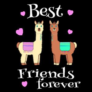 Alpaka Best Friends forever