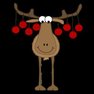 Rentier - Reindeer