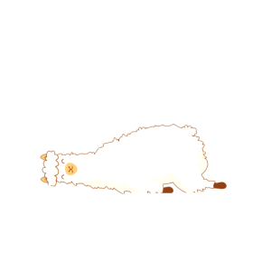 Alpaka Schlafen Niedlich Faul
