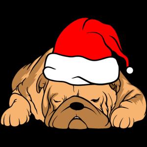 Hund lustig Weihnachten Weihnachstmannmütze Santa