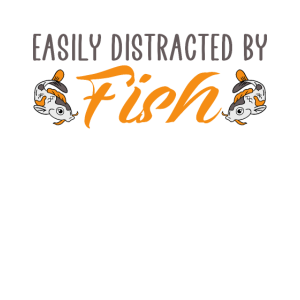easily distracted by fish