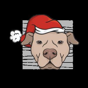 Weihnachten Pitbull Weihnachtsmütze