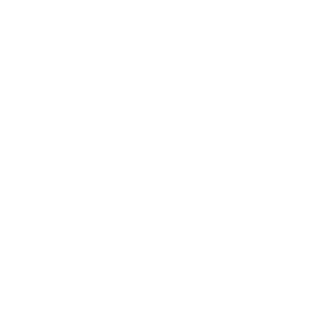 Dog Lover T Shirt - Sarcastic Talk To The Paw!