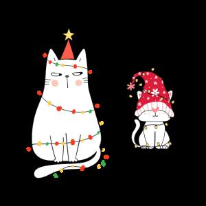 Verspielte Katzen