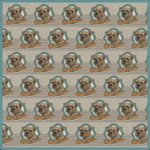 Border-Terrier-Muster