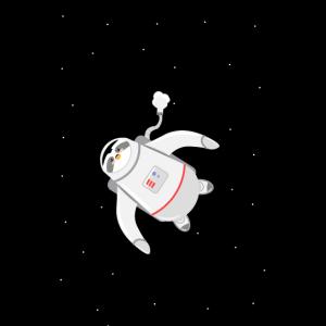 Pinguin Astronaut