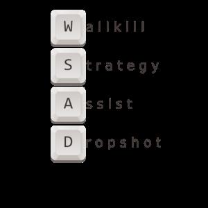 Wallkill Strategy assist dropshot wsad gaming