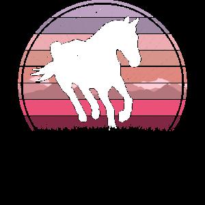 Wild Horse Rosa Sonnenuntergang