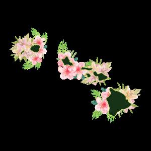 Hawaii Karte Hawaii Blumen Aloha Geschenkidee