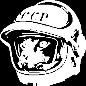 Kosmo Katze Astronaout