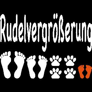 Schwanger Hund Baby Schwangerschaft