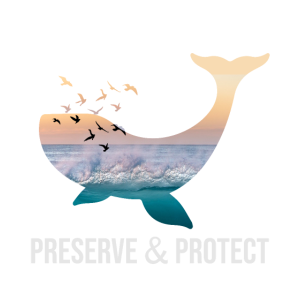 Wal Preserve Protect Umweltschutz Naturschutz