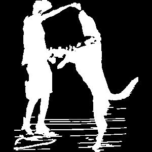 hundeschule hundesport labrador schäferhund