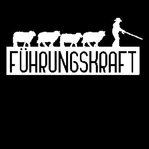 Führungskraft Schafe Herde Büro lustig
