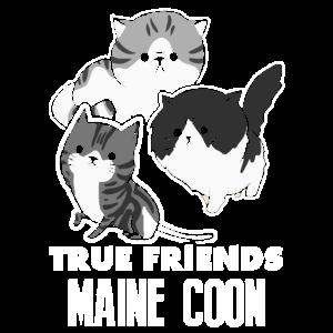 Maine Coon True Friends Shirt