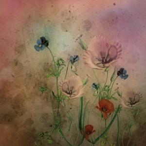Blumen Blüten