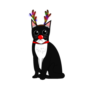 Weihnachtskatze schwarz