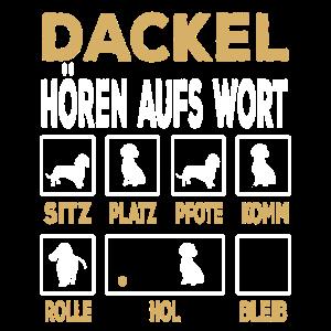 Dackel Haustier Dackelbesitzer Hund Hundeliebhaber