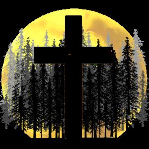 Kreuz Natur Gott Schöpfung Wald Wildnis