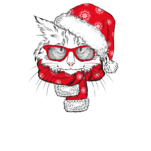 Weihnachtsoutfit Katze Familien Matching Outfit