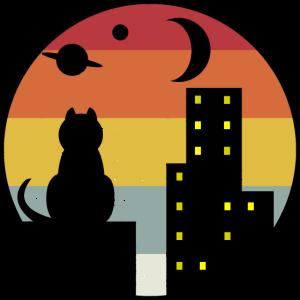 Sonnenuntergang Katze
