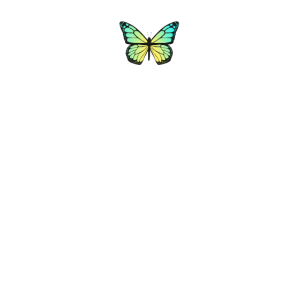 Butterfly Aesthetic - Grüner Schmetterling